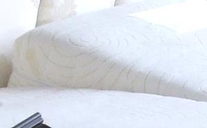 Foam Encapsulated Sprung